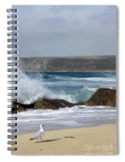 Gull On The Sand Spiral Notebook