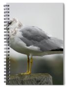 Gullwatch Spiral Notebook
