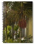 H A N A Spiral Notebook