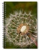Half A Dandelion Spiral Notebook