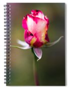 Half-a-rose Spiral Notebook