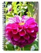 Half And Half Flower Spiral Notebook