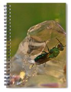 Halicid Bee 8 Spiral Notebook