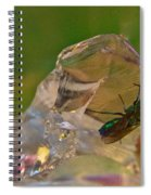 Halicid Bee 9 Spiral Notebook