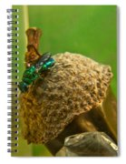 Halicid Wasp 4 Spiral Notebook