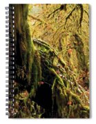 Hall Of Mosses Spiral Notebook