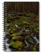 Hall Of The Mosses Spiral Notebook