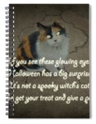 Halloween Calico Cat And Poem Greeting Card Spiral Notebook