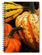 Halloween Colors Spiral Notebook
