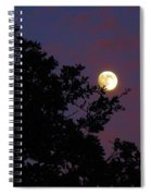 Halloween Moon 2009 Spiral Notebook