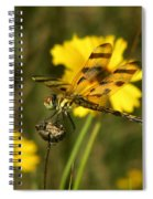 Halloween Pennant Spiral Notebook