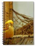 Halloween Yellow Bird Spiral Notebook