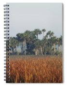 Hammock, Everglades National Park Spiral Notebook