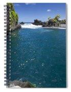 Hanas Venus Pool Spiral Notebook