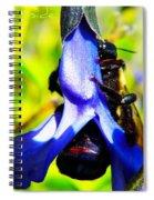 Hangin' Spiral Notebook