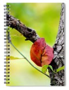 Hanging By A Limb Spiral Notebook