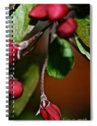 Hanging By A Stem Spiral Notebook