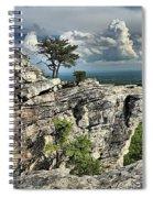 Hanging In North Carolina Spiral Notebook