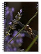 Hanging In The Lavender Spiral Notebook
