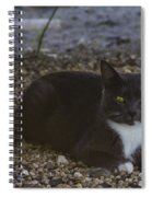 Hanging Out By The Creek Spiral Notebook