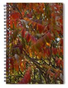 Hanging Out Clothes Spiral Notebook