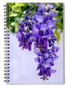 Hanging Purple Passion Spiral Notebook