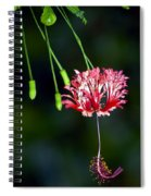 Hanging Coral Hibiscus Spiral Notebook