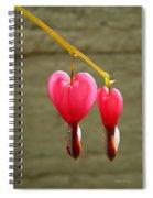 Hanging Together Spiral Notebook