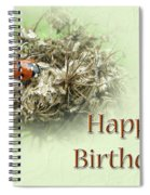 Happy Birthday Greeting Card - Ladybug On Dried Queen Anne's Lace Spiral Notebook