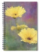 Happy Faces Spiral Notebook