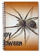 Happy Halloween Spider Greeting Card - Dolomedes Tenebrosus Spiral Notebook