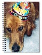 Happy Happy Birthday Buddy Spiral Notebook