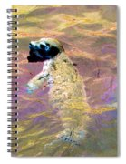 Harbor Seal Spiral Notebook