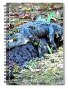 Hard Day In The Swamp - Digital Art Spiral Notebook