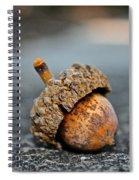 Hard Hat Spiral Notebook