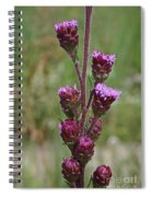 Harebell Buds Spiral Notebook