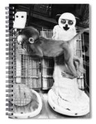 Harlows Monkey Experiment Spiral Notebook