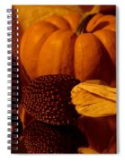 Harvest Reflections Spiral Notebook
