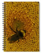 Harvesting The Sun Spiral Notebook