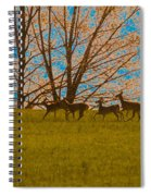 Has Anyone Seen Rudolph Spiral Notebook