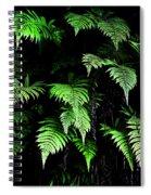 Hawaiian Fern Spiral Notebook