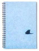 Hawk Eyes Spiral Notebook