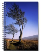 Hawthorn Trees In Sally Gap, County Spiral Notebook
