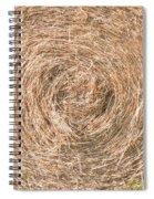 Hay  7207 Spiral Notebook