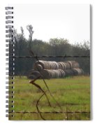 Hay Lined Up Spiral Notebook