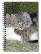 Haystack Buddies Spiral Notebook