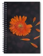 He Loves Me... Spiral Notebook