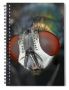 Head Of A Green Blow Fly Spiral Notebook