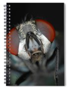 Head Of Green Blow Fly Spiral Notebook