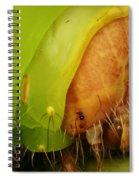 Head Of Polyphemus Caterpillar Spiral Notebook